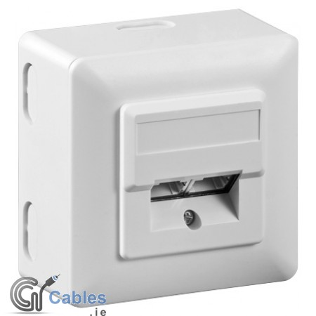 CAT 5e Double Wall Plate