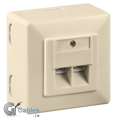 CAT 6 Double Wall Plate